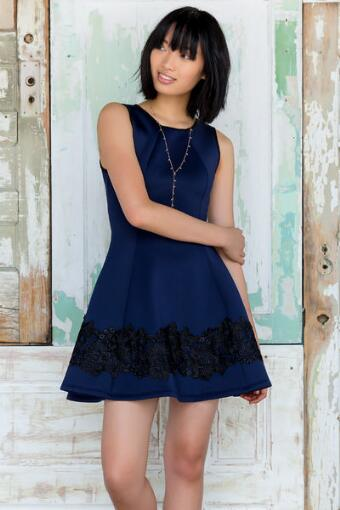 Loreena Lace Scuba Dress